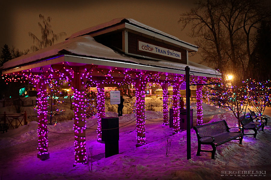 sergei-belski-calgary-photographer-zoolights-photo-3